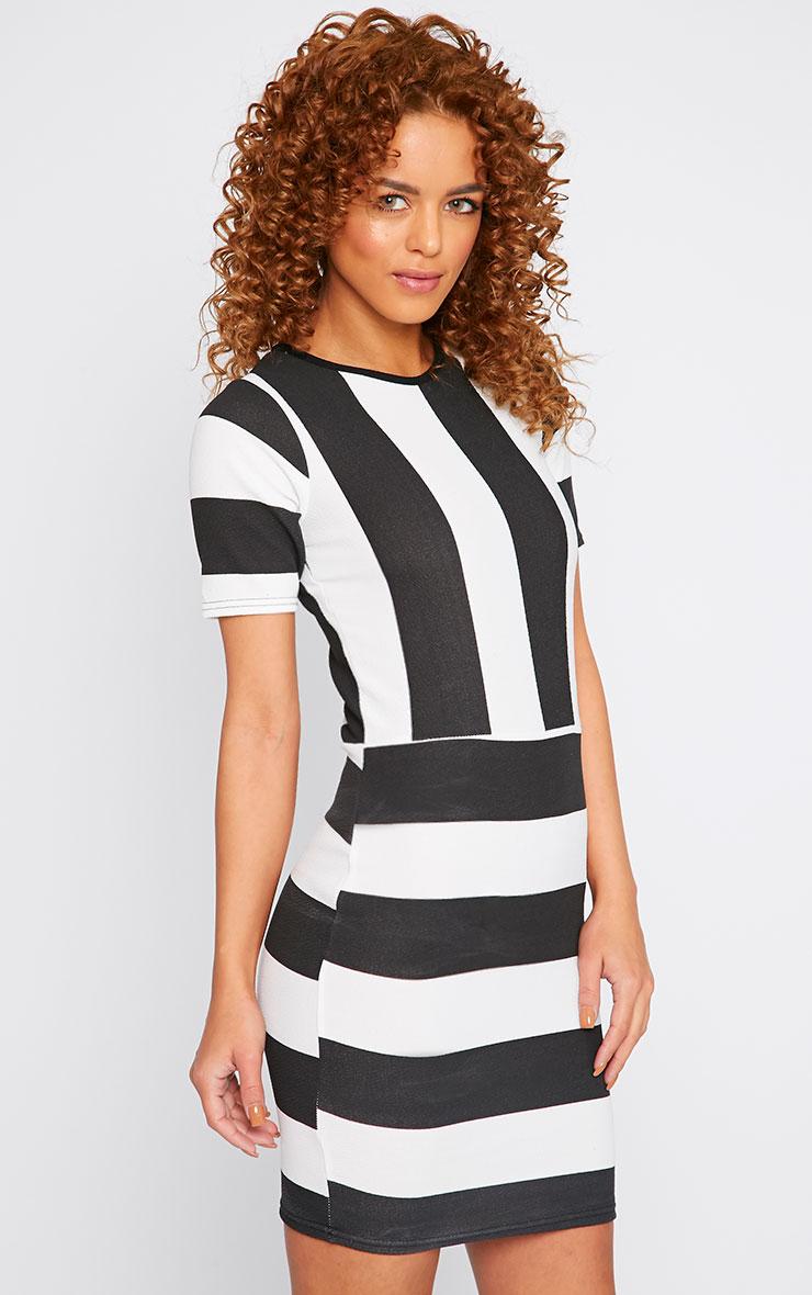 Tiffany Monochrome Stripe Mini Dress 3
