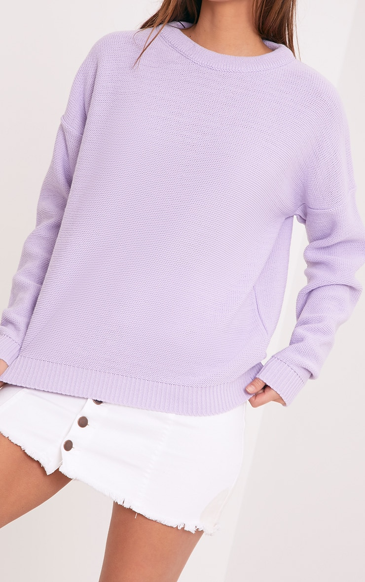 Roberta Lilac Round Neck Knitted Jumper 5