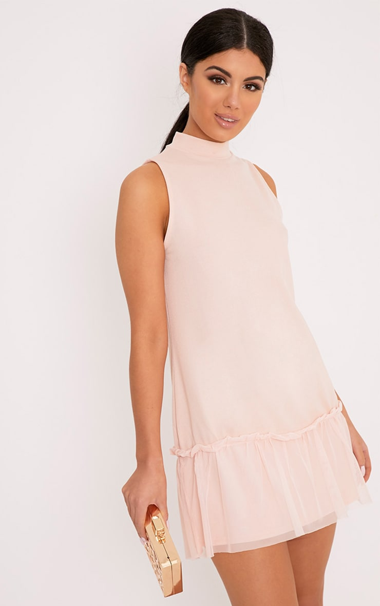 Brogan Nude Mesh Detail Shift Dress 1