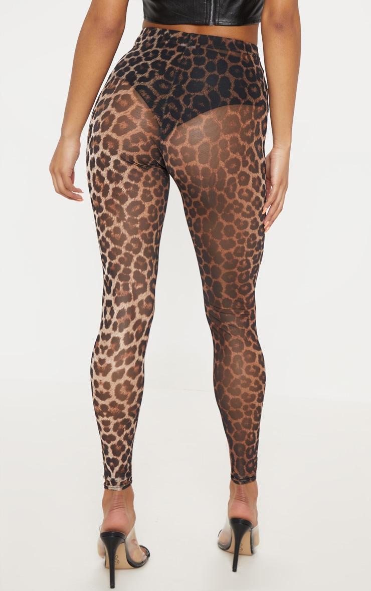 Leopard Print Mesh Legging 4