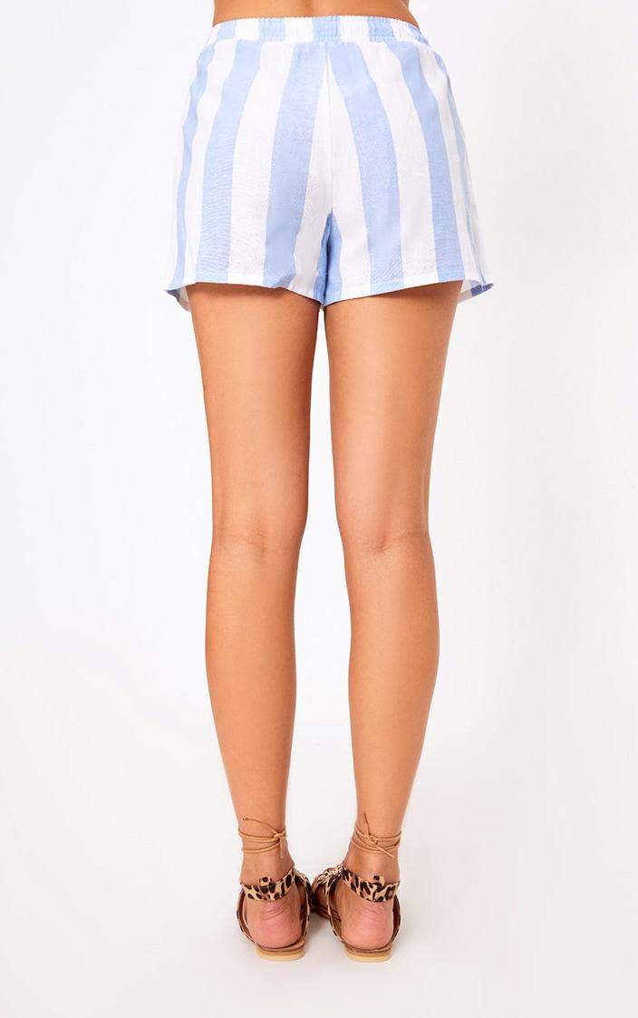 Baby Blue Bold Stripe Beach Shorts 3