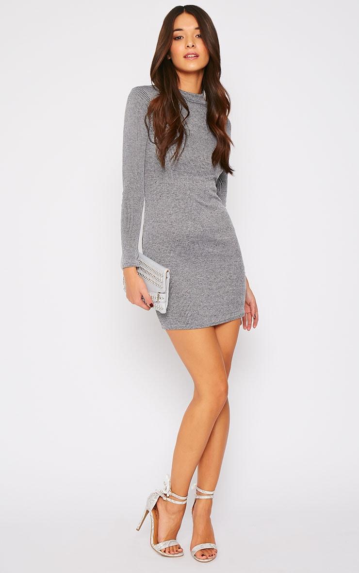 Basic Charcoal Long Sleeve Mini Dress 3