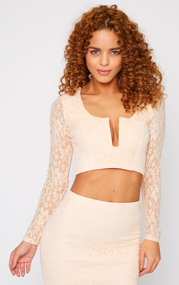 Danita Nude Lace Sweetheart Plunge Crop Top 1