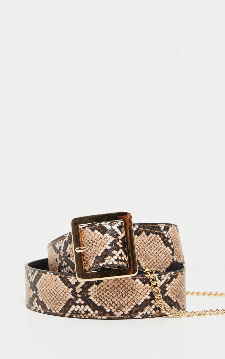 Natural Snake Belt With Gold Chain 2