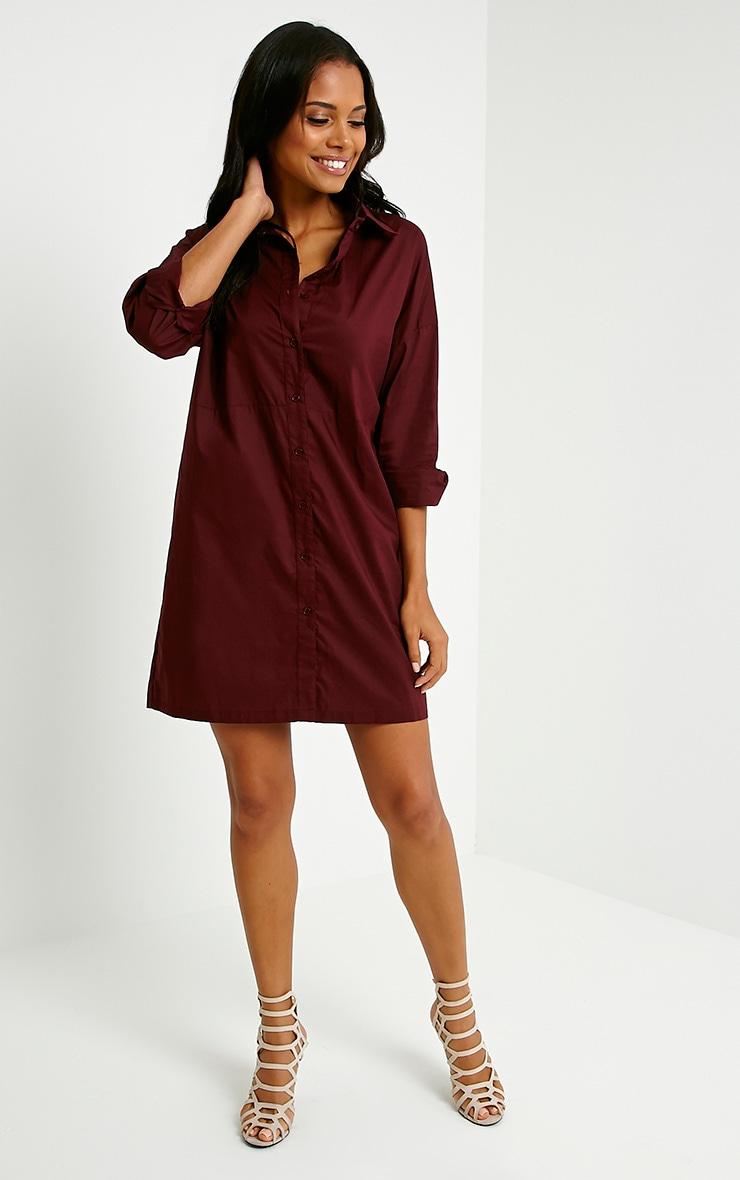 Carson Oxblood Shirt Dress 3