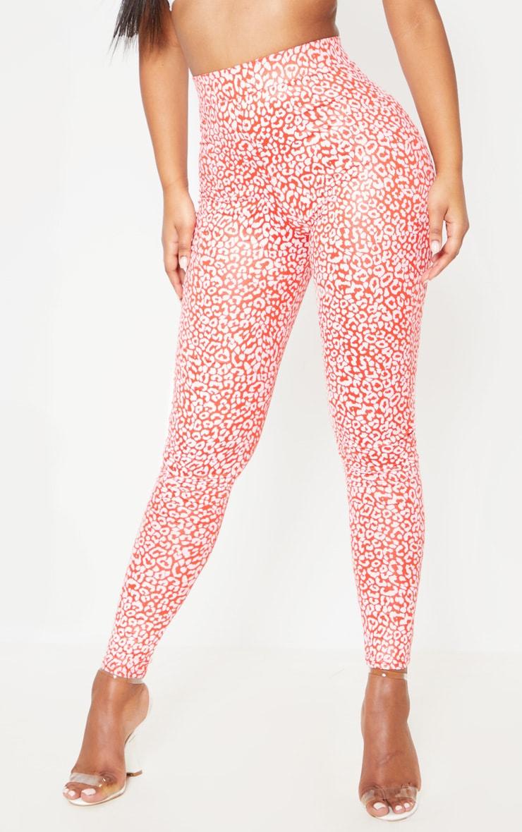 Red Shiny Leopard Print Legging 2