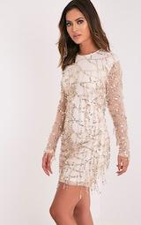 758bd98625c6 Freyana Rose Gold Sequin Detail Long Sleeve Mini Dress - Photo Dress ...