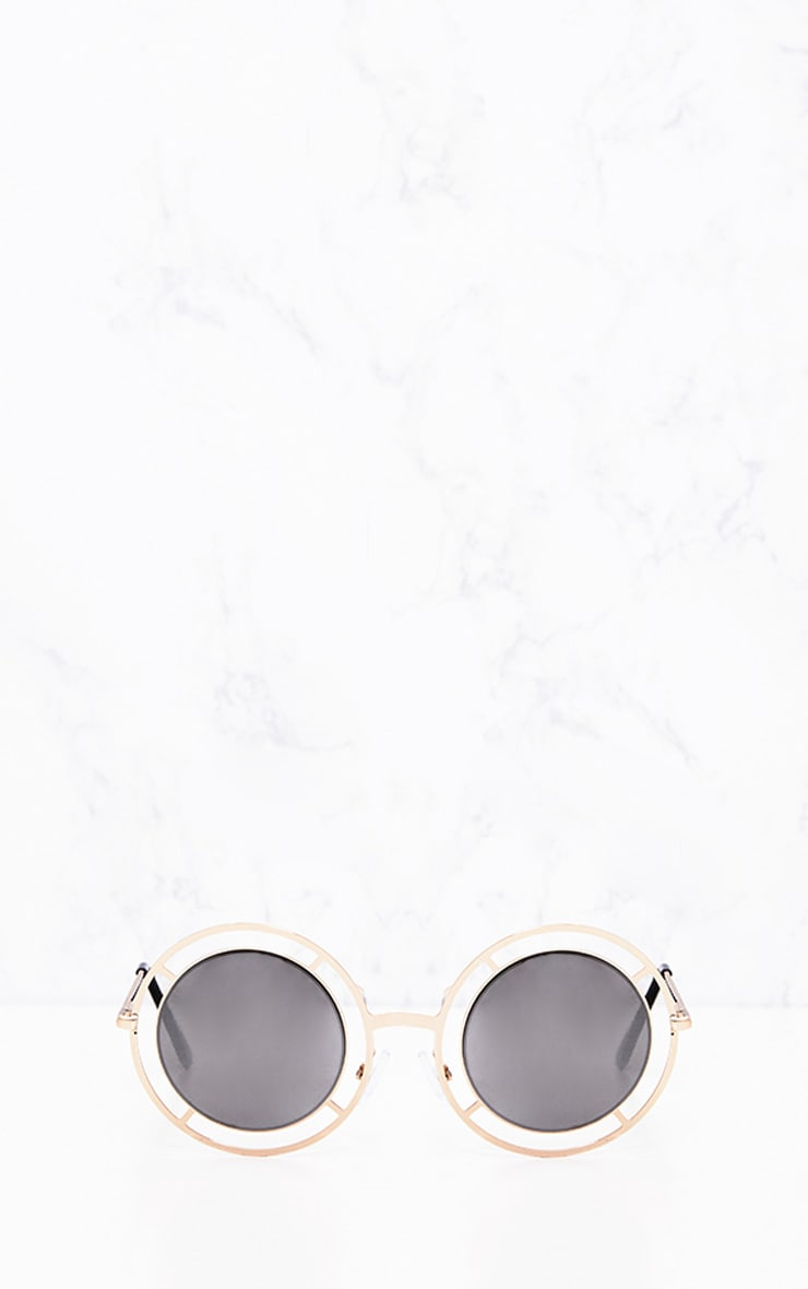 Megan Gold Cricle Frame Sunglasses 2