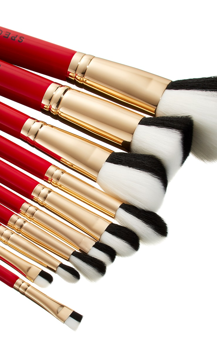 Spectrum Collections Cruella 10 Piece Brush Set 5