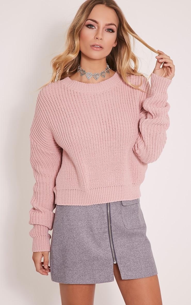 Cara pull court tricoté rose pâle 1