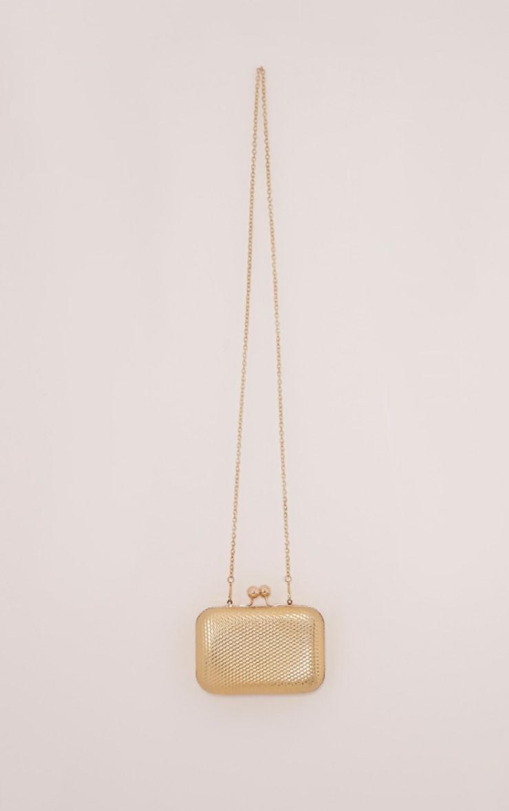 Morgan Gold Box Clutch Bag 4