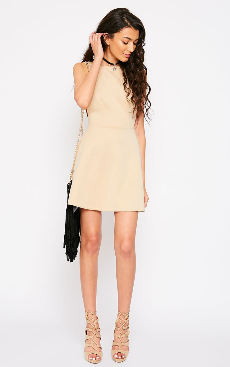 Ash Stone V Back Sucba Skater Dress 3