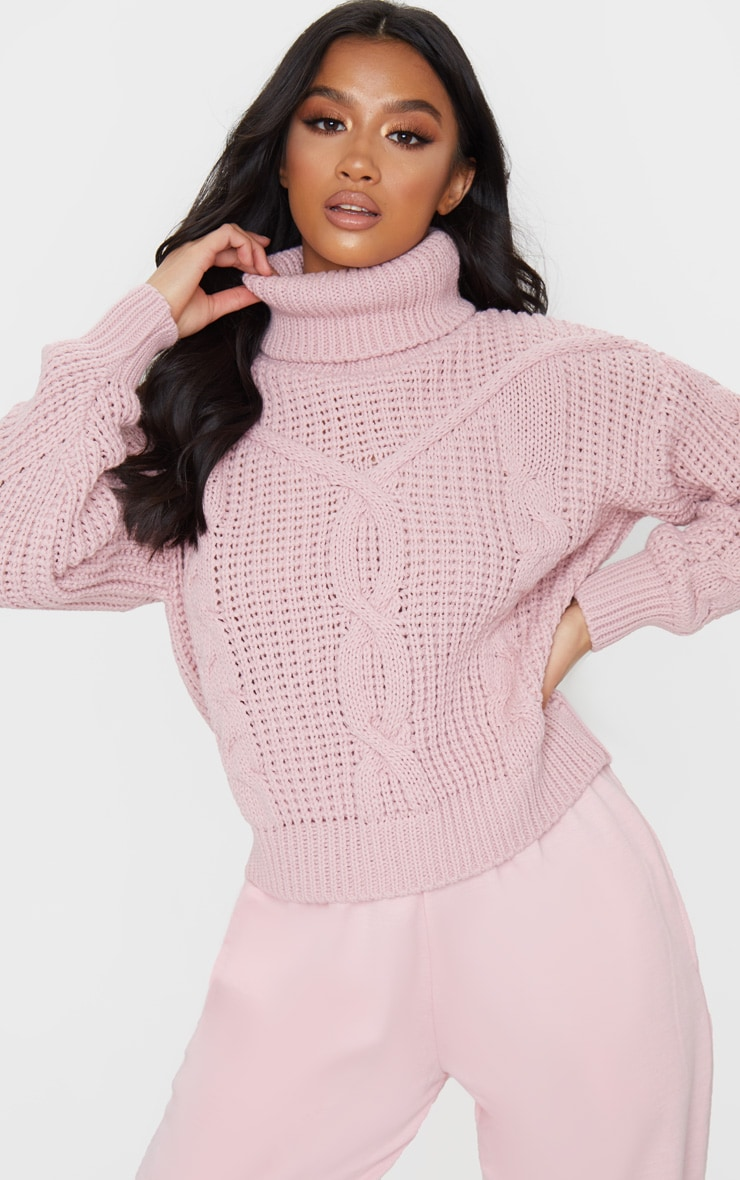 Petite Blush Roll Neck Knitted Long Sleeve Sweater 1