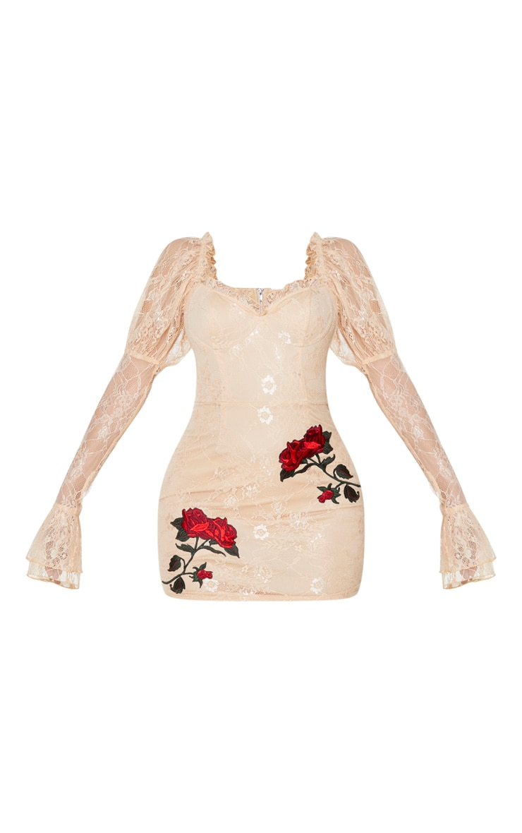 Nude Lace Rose Embroidered Long Sleeve Bodycon Dress 5
