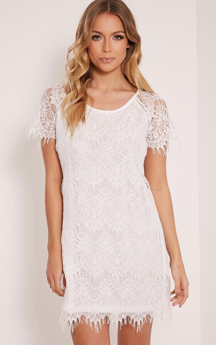 Adara White Lace Shift Dress 1