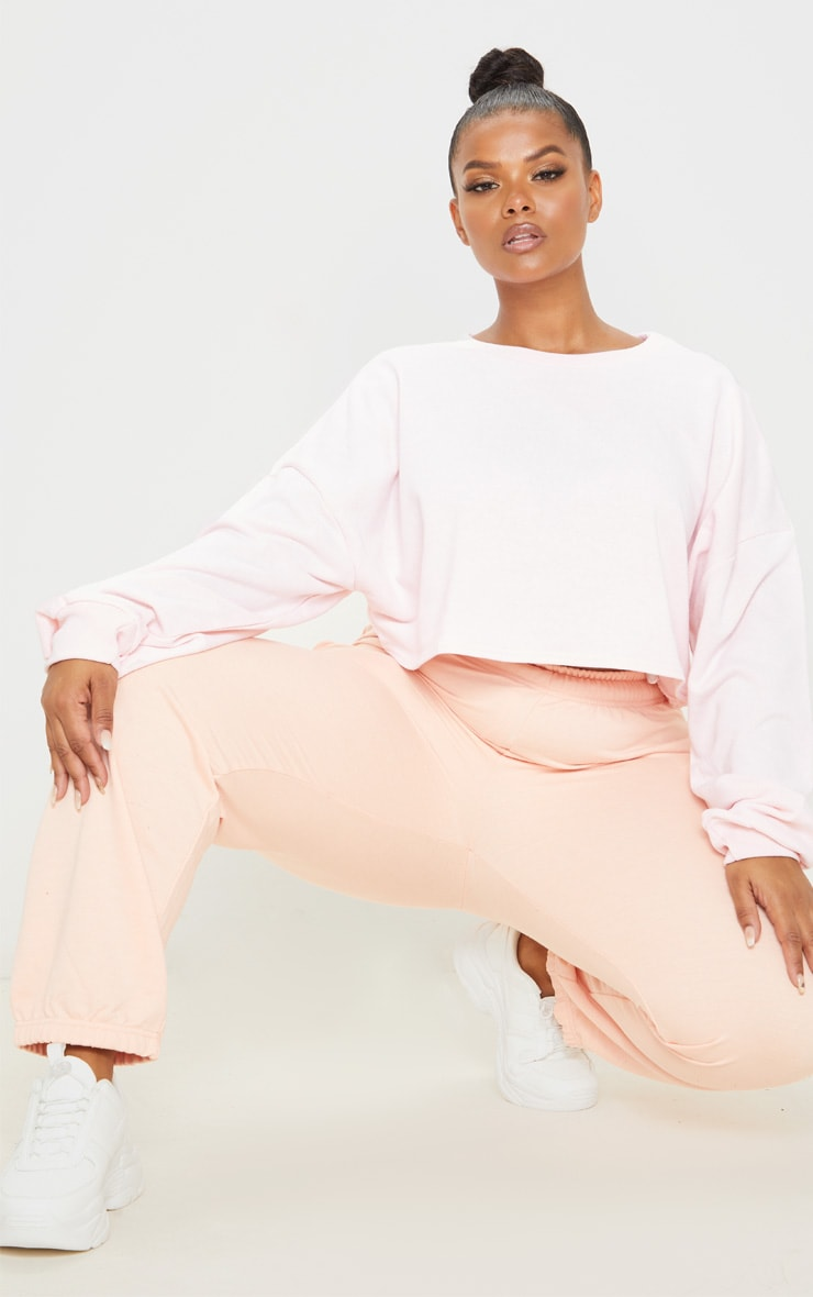 Plus Blush Crop Sweater 5