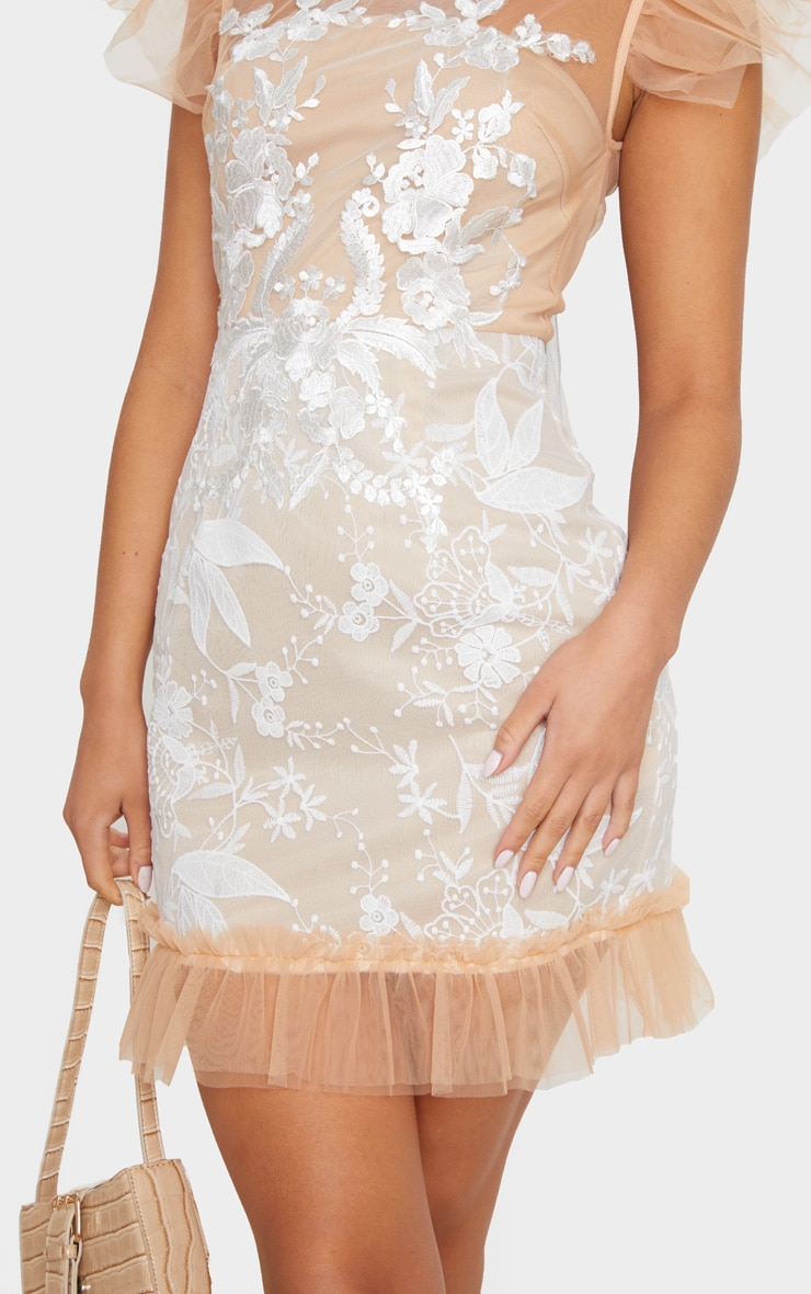 Nude Mesh Embroidered Short Sleeve Frill Detail Bodycon Dress 4