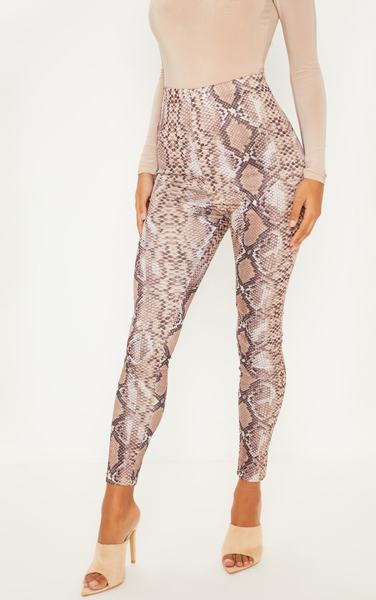 Brown Snakeskin Print Legging 2