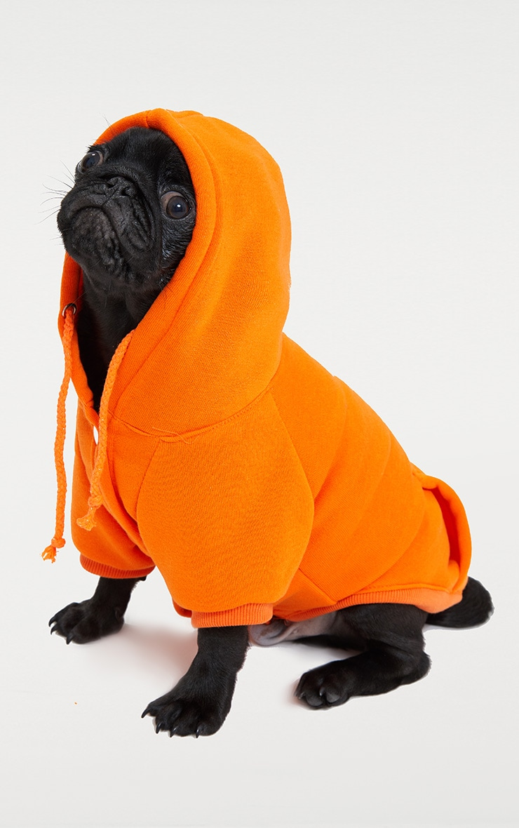Orange Doggy Hoodie  1