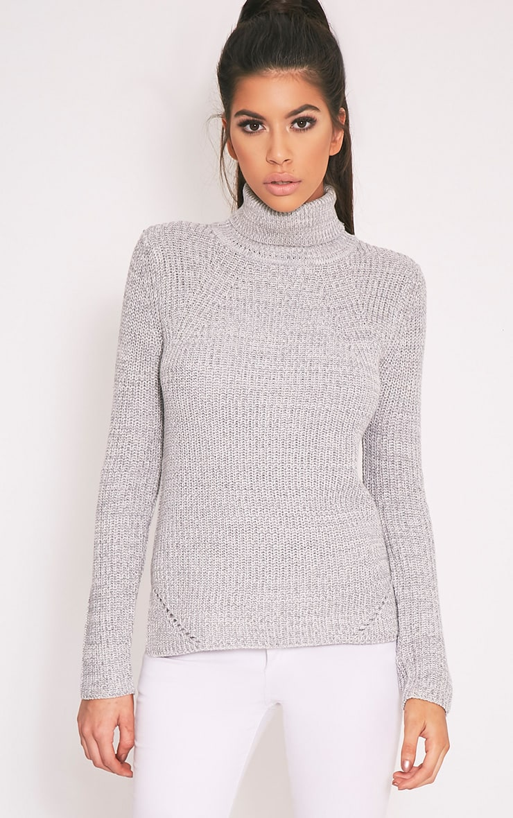 Soraya Grey Turtle Neck Knitted Jumper 1