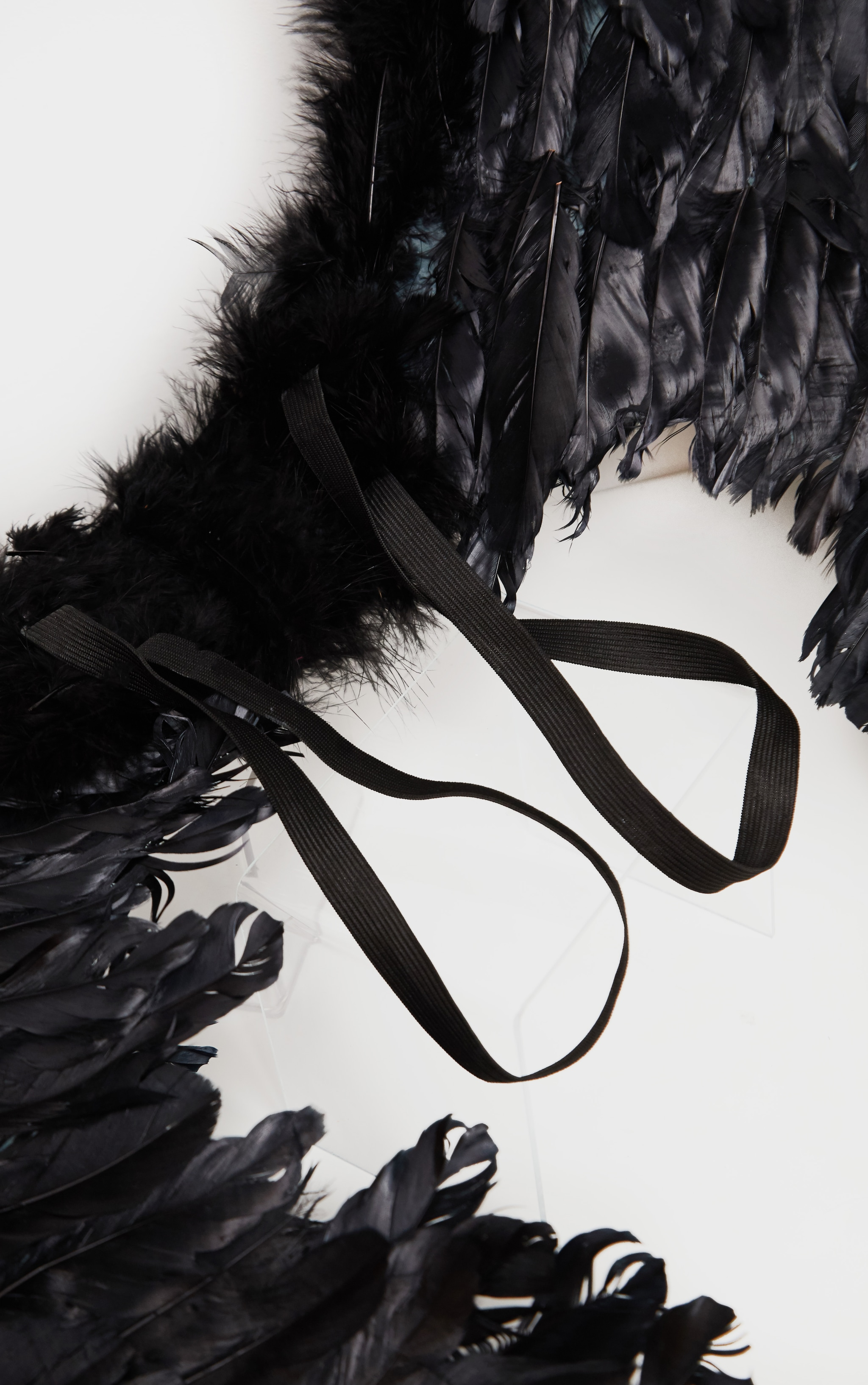 Black Extra Large Feather Angel Wings 3