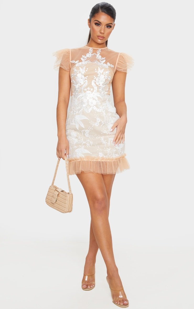 Nude Mesh Embroidered Short Sleeve Frill Detail Bodycon Dress 3