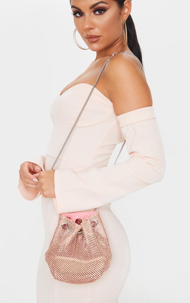 Rose Gold Diamante Pouch Bag 2