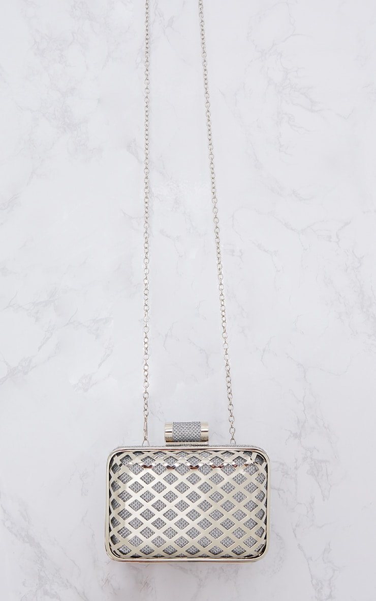 Silver Metal Cage Clutch 3