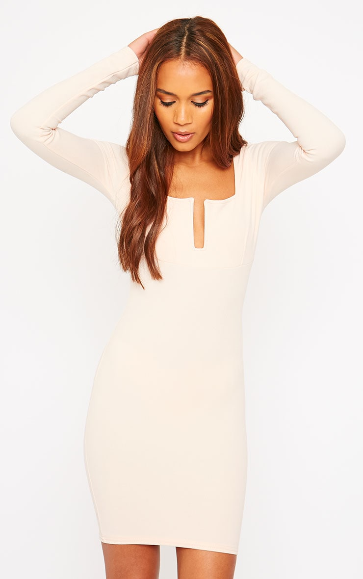 Roz Nude Plunge Mini Dress 1