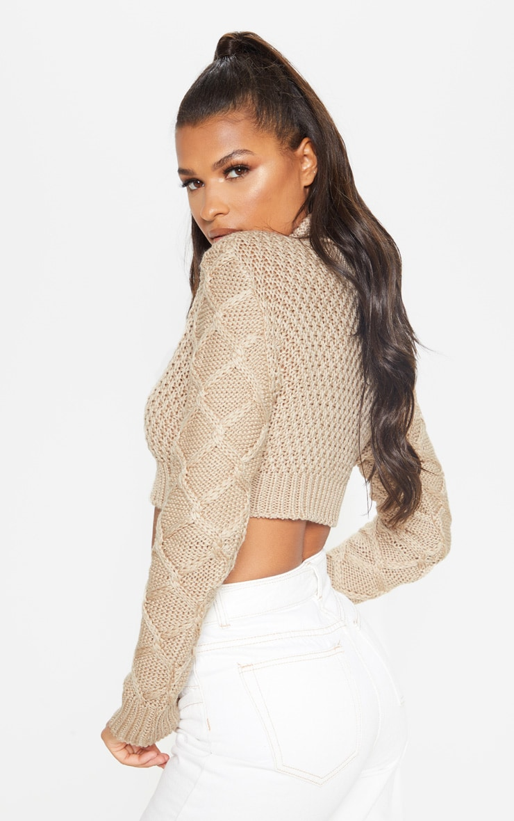 Stone Roll Neck Cable Sleeve Cropped Jumper 2