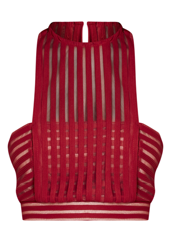Velette Red Striped Mesh Crop Top 3