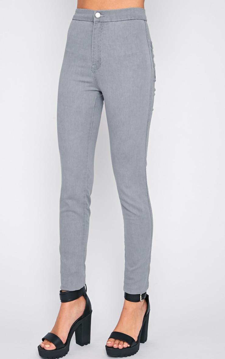 Dina Grey High Waist Skinny Jean  2