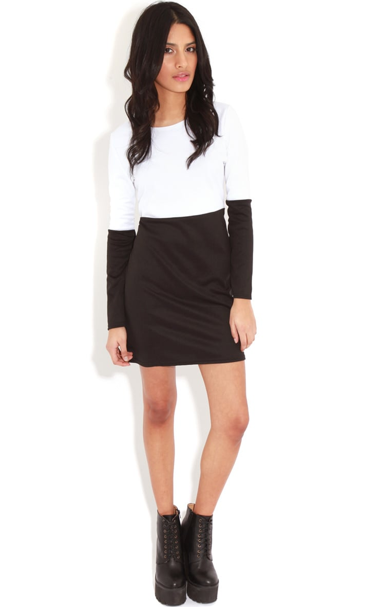 Francie Monochrome Panel Scuba Dress		 3