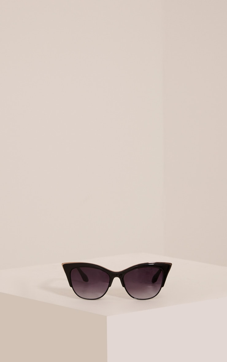 Rio Black Retro Frame Sunglasses 3