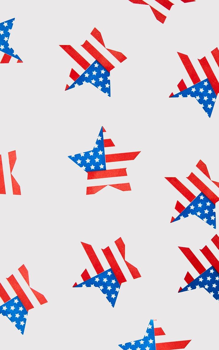 American Flag Nipple Covers 4