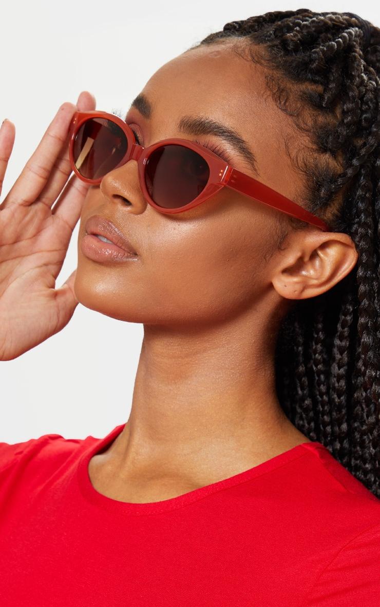 Red Plastic Frame Oval Sunglasses 1