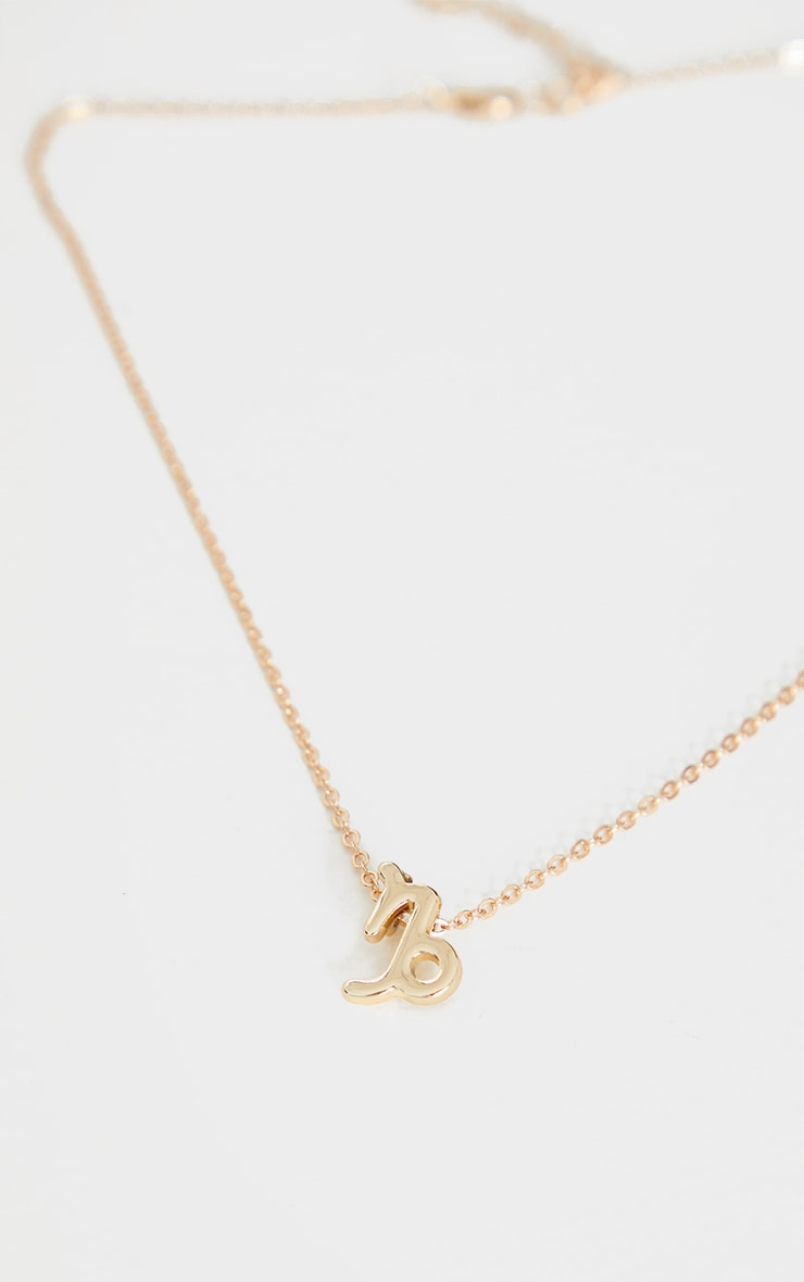 Gold Capricorn Star Sign Necklace 3