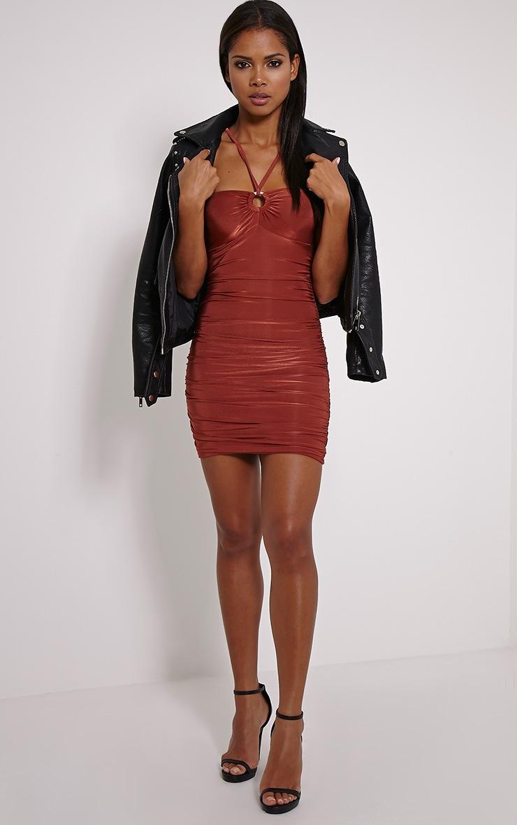 Palia Rust Slinky Tie Neck Mini Dress 3
