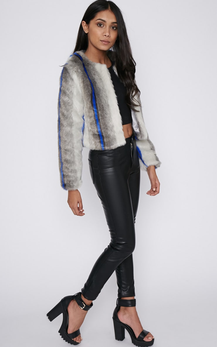 Preslie Grey Cropped Faux Fur Jacket with Cobalt Stripe 4