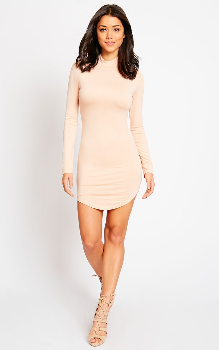 Alby Nude Curve Hem High Neck Dress 3