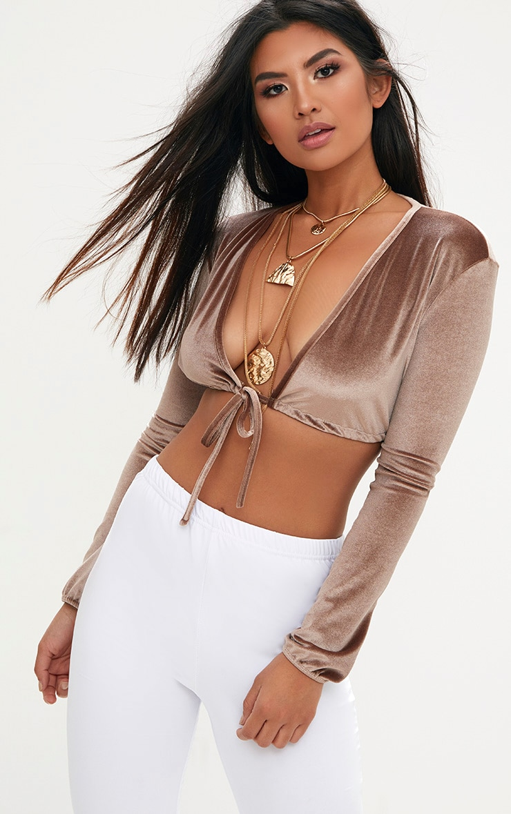 Truffle Velvet Plunge Long Sleeve Crop Top 1