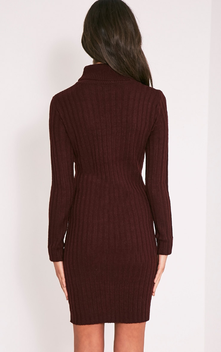 Bianca Berry Ribbed Roll Neck Jumper 2