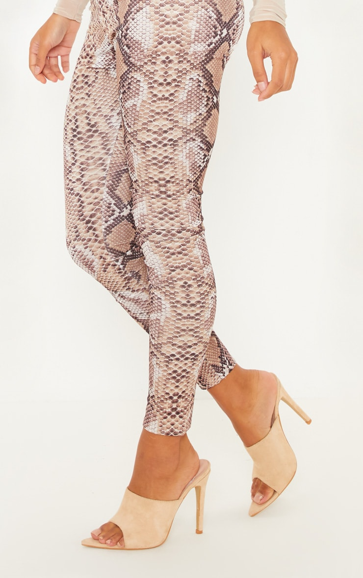 Brown Snakeskin Print Legging 5