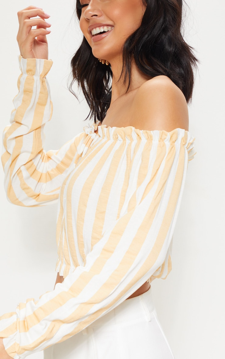 Nude Stripe Printed Bardot Long Sleeve Crop Top 5
