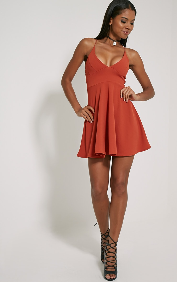 Luccie Rust Crepe Skater Dress 3