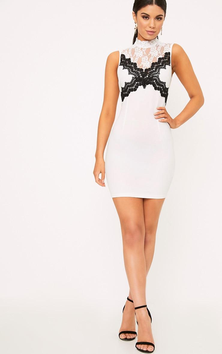 Zendana White High Neck Contrast Lace Bodycon Dress 4
