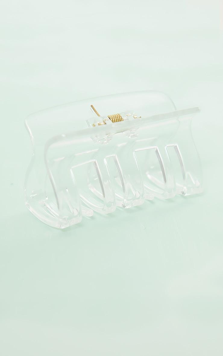 Pince carrée incurvée transparante 2