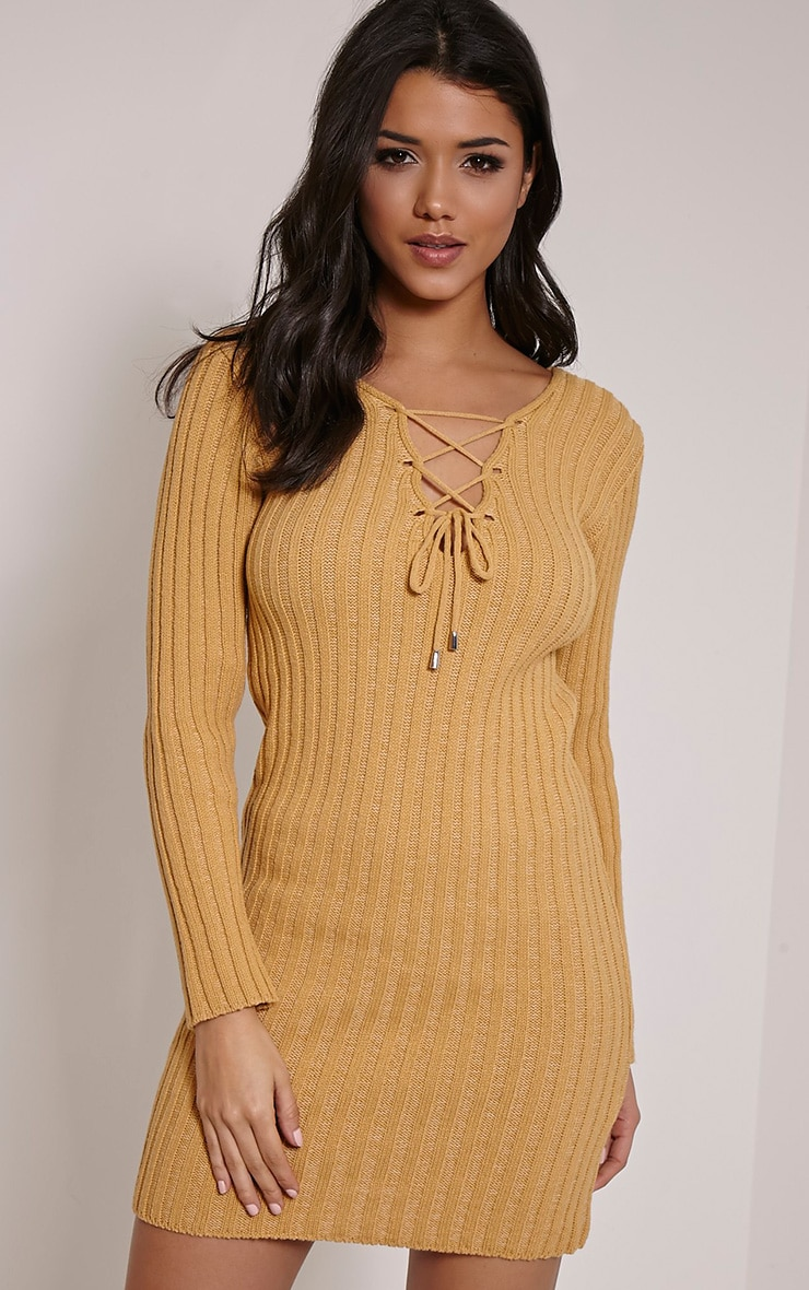 Rondy Camel Lace Up V Mini Dress 1