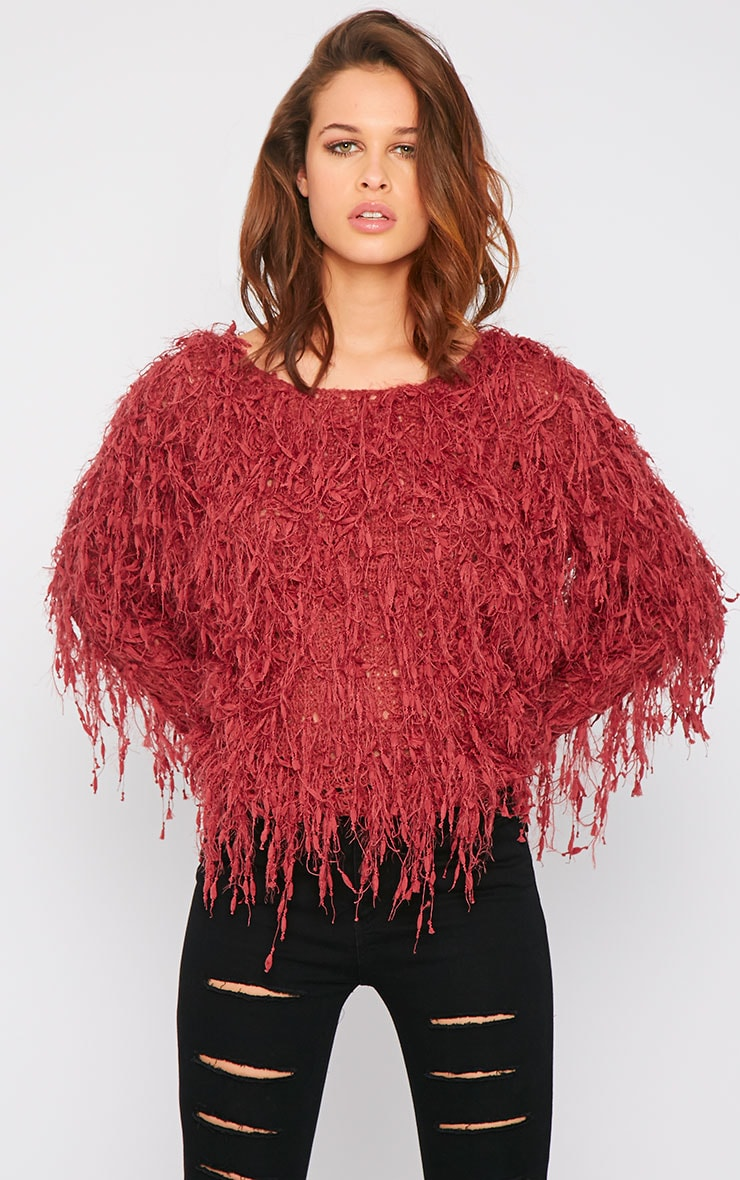 Alvery Wine Shaggy Knit Jumper  4