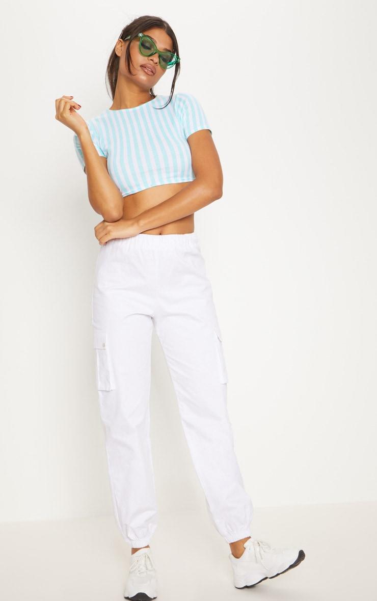 Mint Jersey Stripe Crop Top 1